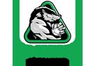 Freiberg Logo